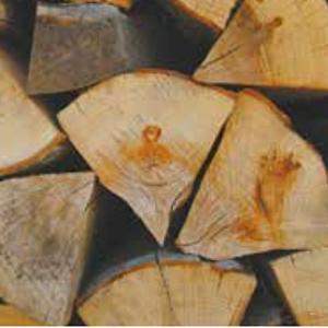 Qualité de l'air : Savez-vous bien vous chauffer au feu de bois ?